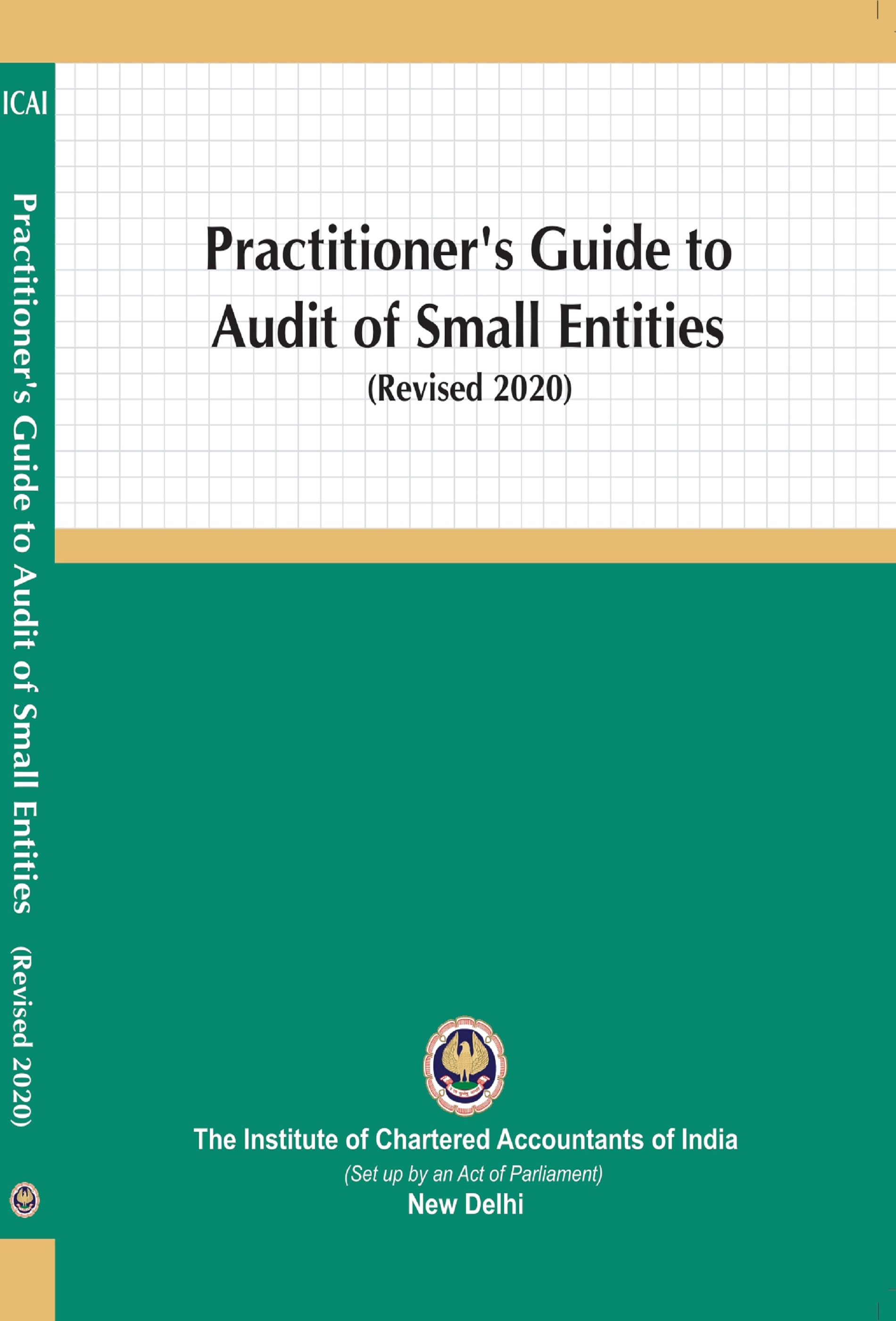 Practitioner's Guide to Audit of Small Entities (Revised 2020)