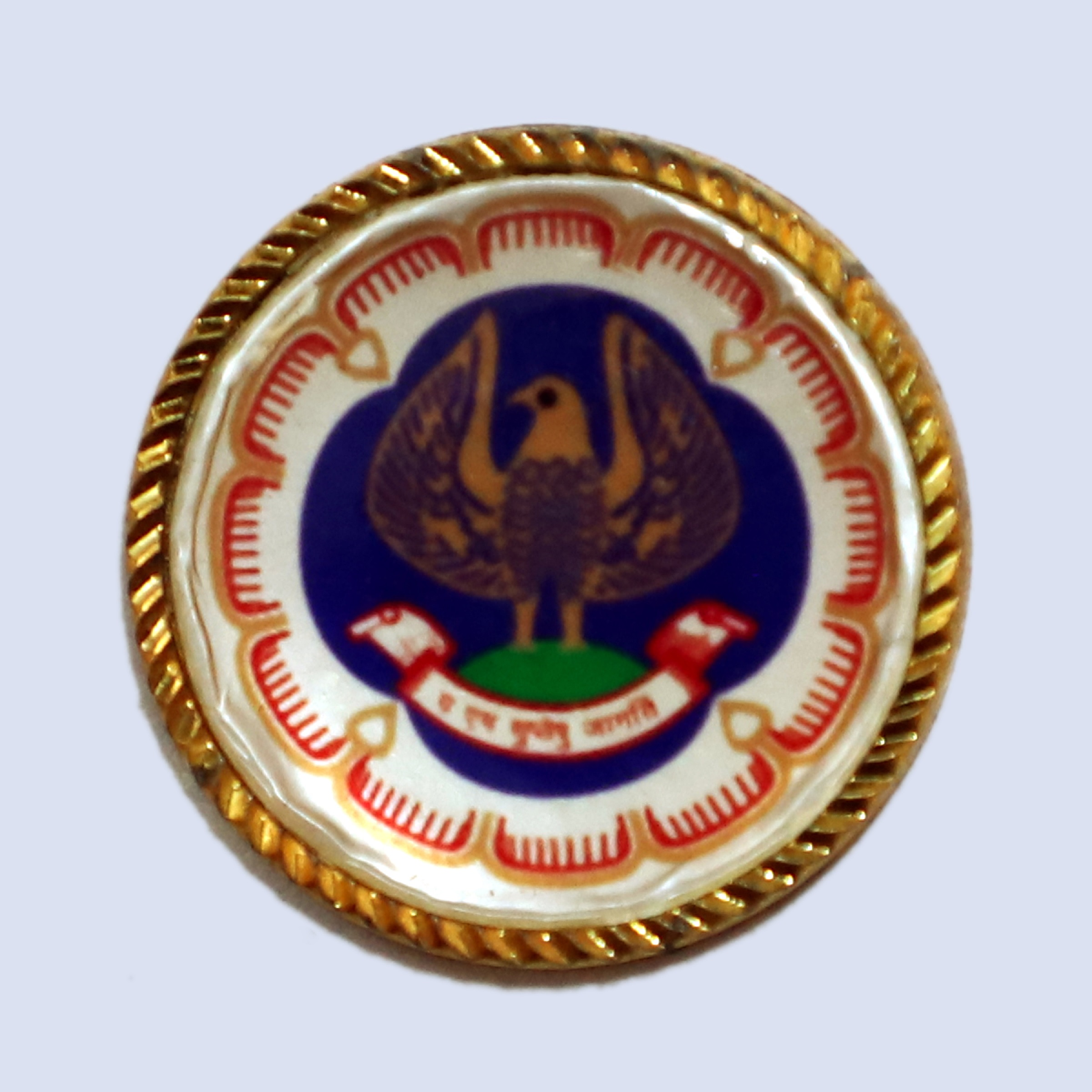 Lapel Pin - ICAI LOGO (Magnetic)